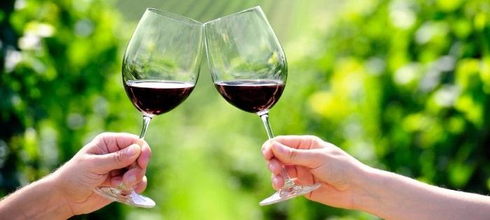 11-reasons-wine