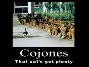 Cojones_by_psbox362-640x479