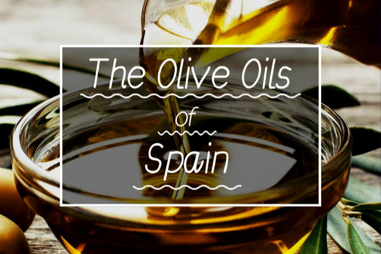 OLIVE OILS OF SPAIN COVER