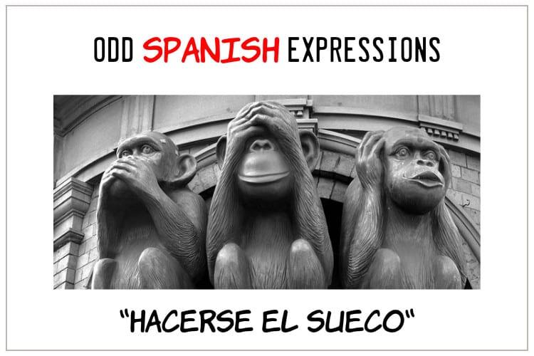 SPANISH EXPRESSION SUECO