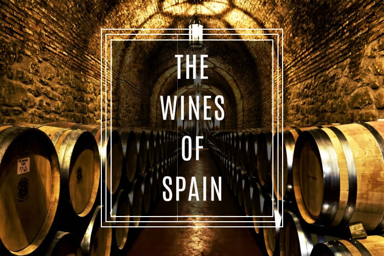Image result for wines from spain
