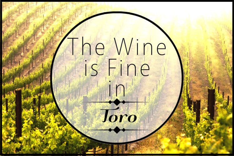 The Wine is Fine in Toro