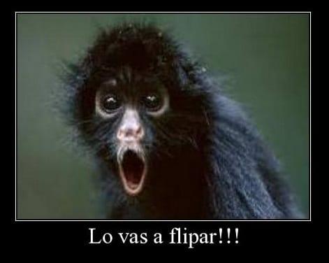 flipar