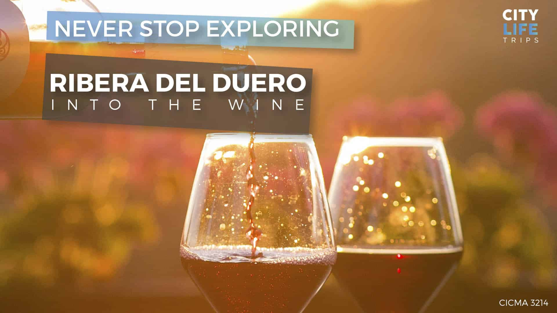 Into the Wine – Ribera del Duero & Arlanza